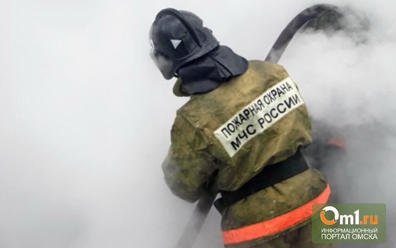 За выходные в Омске сгорело семь автомобилей