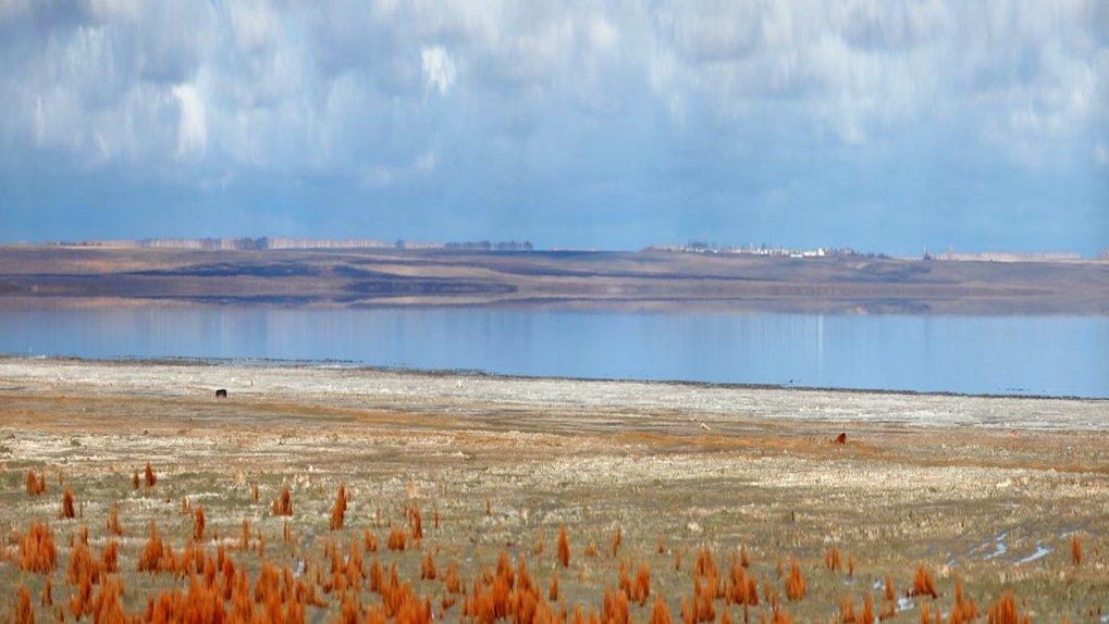 Омские власти ищут инвесторов на лечебные грязи с озера Эбейты