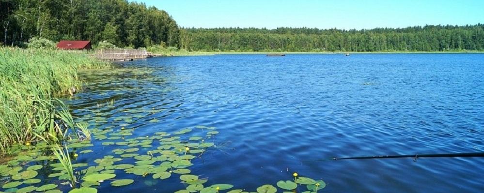 Лечебная грязь, сплав на байдарках и легендарные озера: как провести отпуск в Омской области?