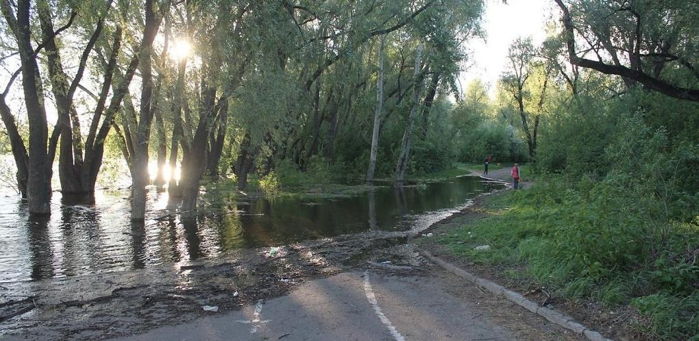В Омске из-за разлива Иртыша затопило парк «Зеленый остров»