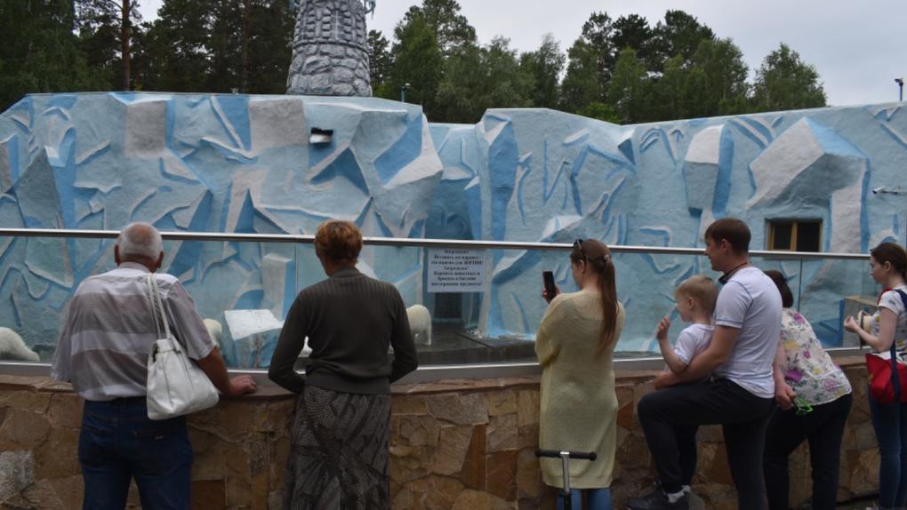 В новосибирский зоопарк в первый день открытия после самоизоляции выстроилась очередь