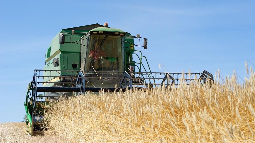 В Новосибирской области создали реестр особо ценных сельхозземель