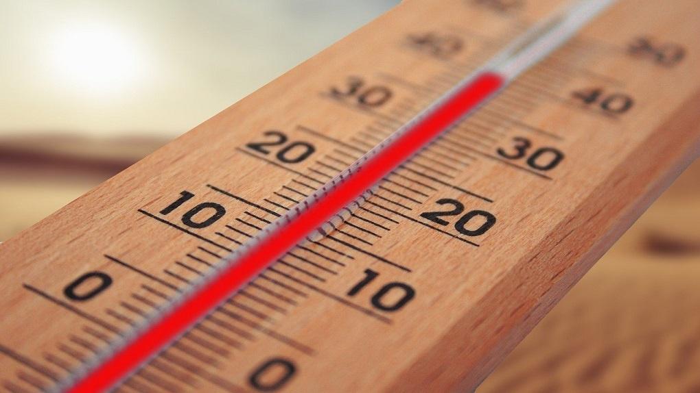 Синоптики прогнозируют тёплую зиму в Новосибирске