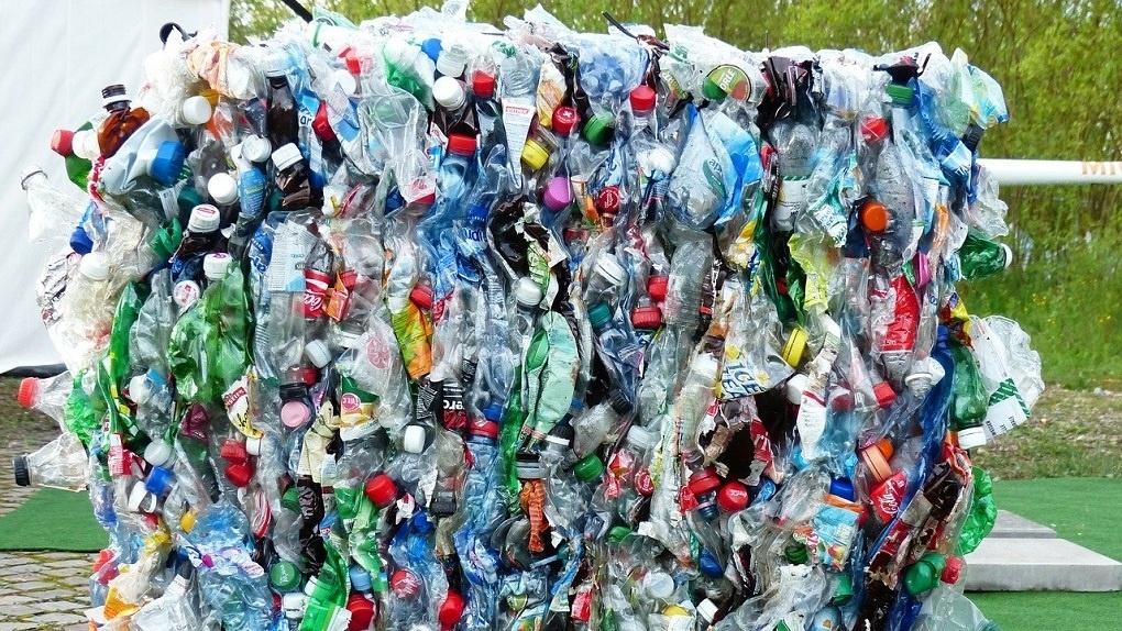 «Экология-Новосибирск» проиграла очередной суд и осталась должна 19 млн за вывоз мусора