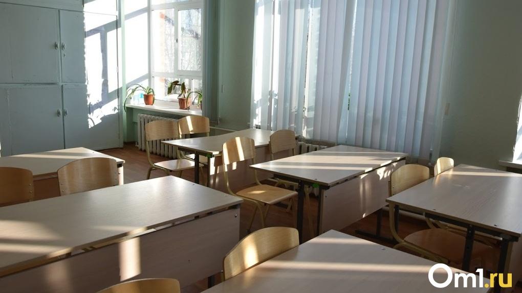 Школьники Омской области могут выйти с «дистанционки» уже на следующей неделе