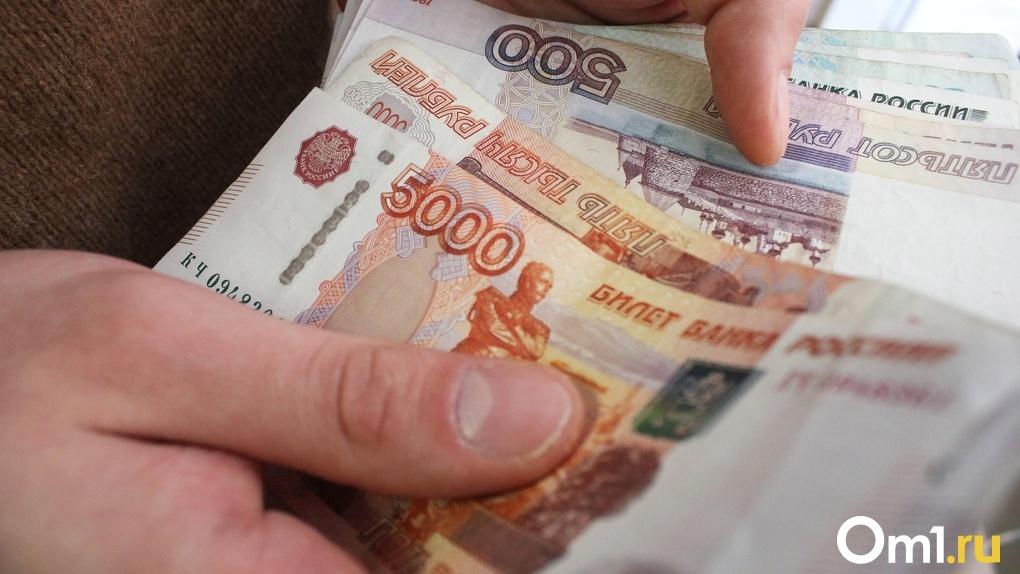 Омские многодетные семьи будут получать по пять тысяч рублей на малыша