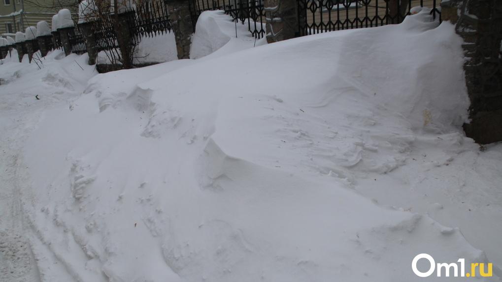 Общественники попросили Путина помочь убрать снег в Новосибирске