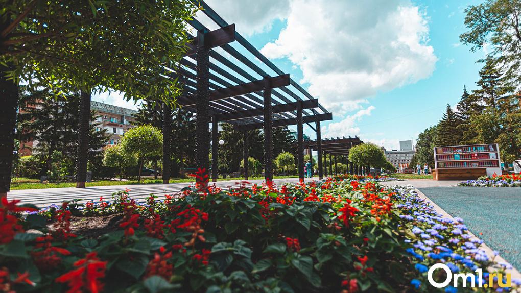 Вомские клумбы посадили почти миллион цветов