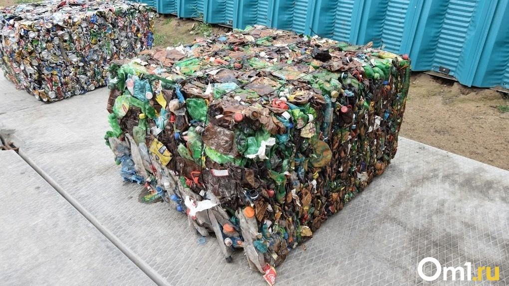 Омичи убрали мусор с «Зелёного острова» за других горожан. Всего получилось 7200 литров