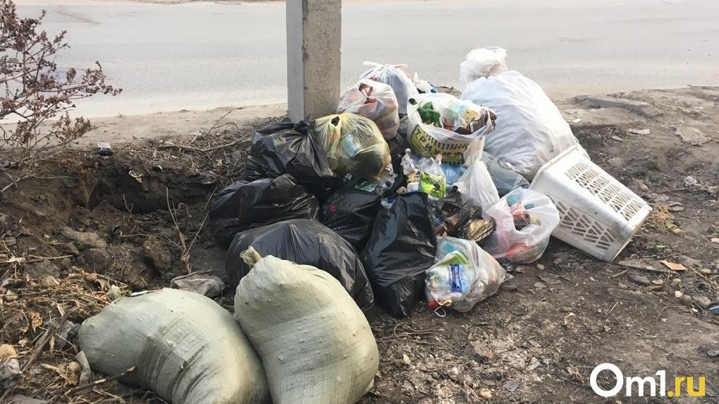 В Новосибирске могут резко подскочить цены на вывоз мусора