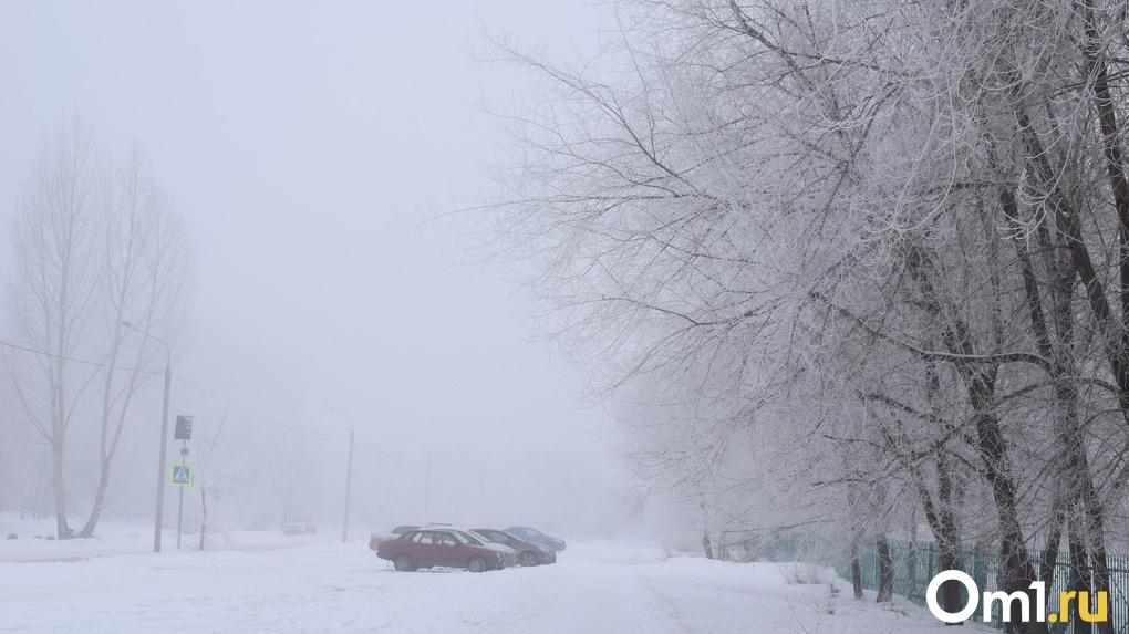 Новая волна аномального холода: в Новосибирске ударят морозы до -35 градусов