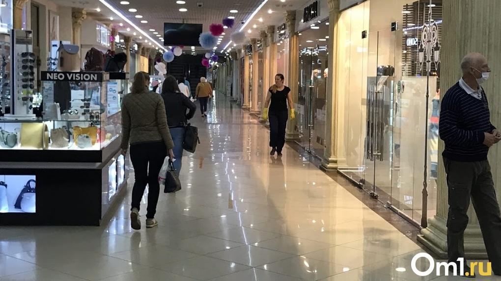 В Омске за 160 миллионов рублей продают обанкротившийся торговый комплекс