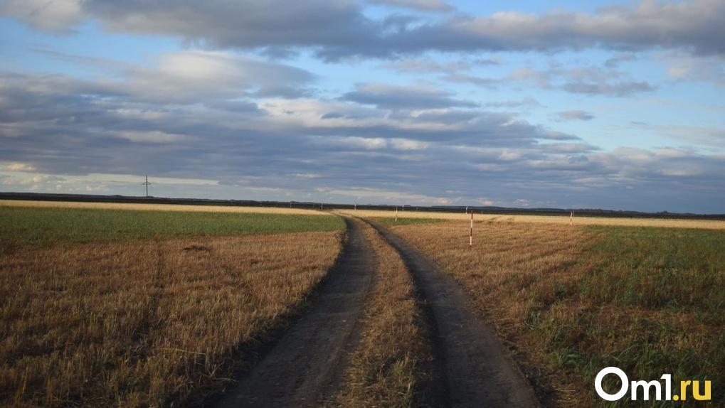 В Омской области два села закрыли на карантин из-за массового распространения коронавируса