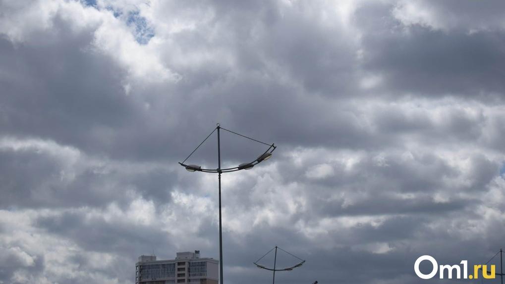 Штормовое предупреждение из-за ветра объявили новосибирские синоптики на выходные