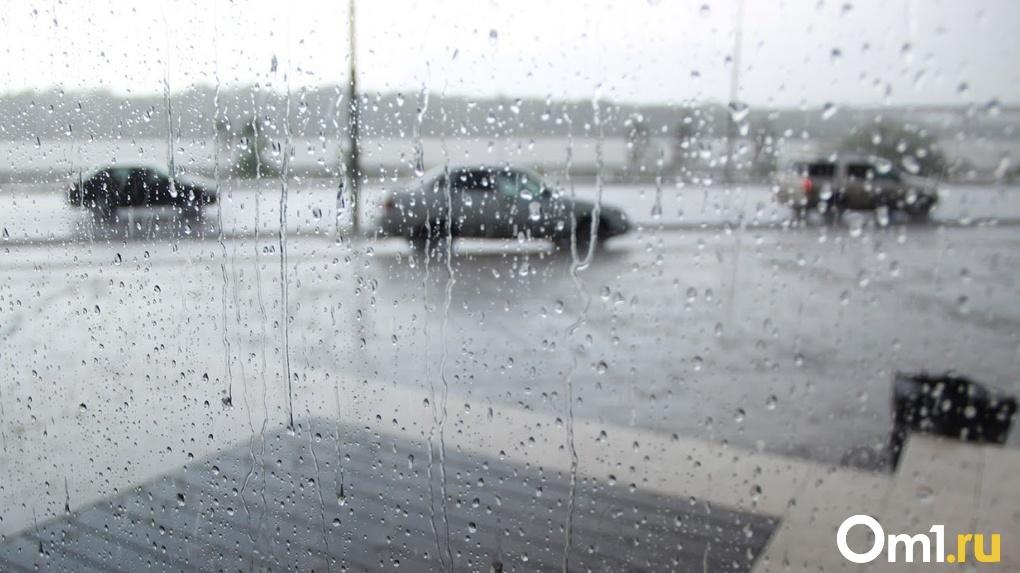 Синоптики прогнозируют дожди? В Омской области в январе потеплеет до -2 градусов