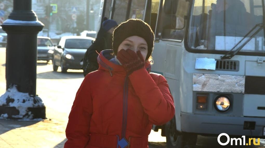 По пути в Омск на трассе замерз автобус