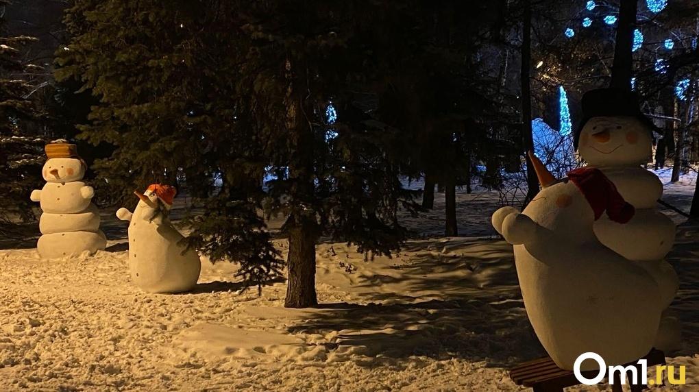 Холода ниже нормы: синоптики рассказали, какая погода ждёт новосибирцев в январе