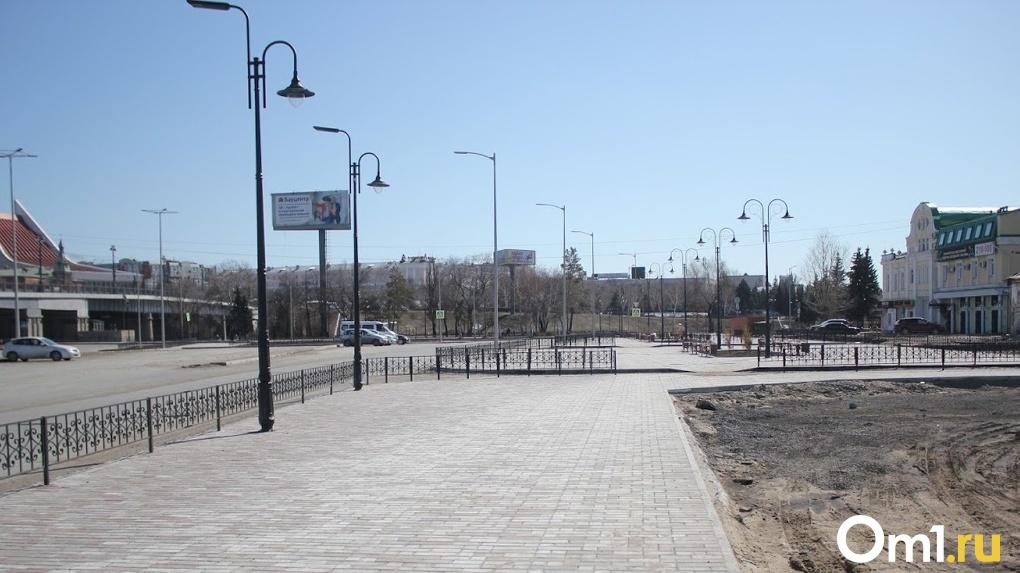 Учёные подсчитали, на сколько процентов озеленён Омск
