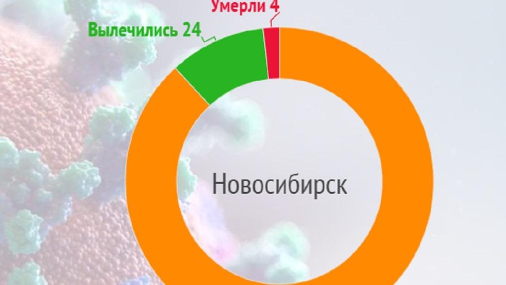 Коронавирус в мире, России и Новосибирске: актуальные данные на 24 апреля