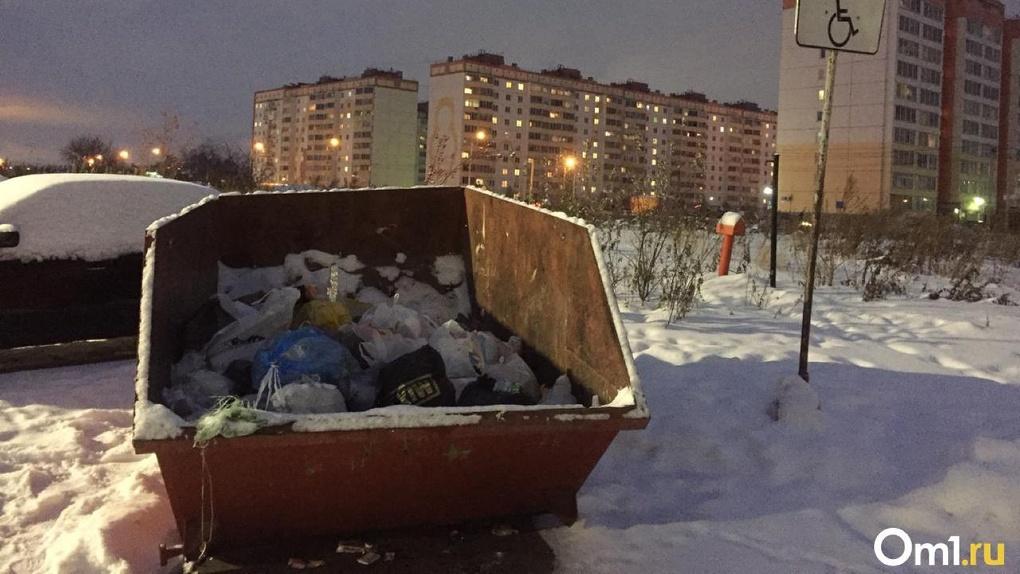 Гринпис включил Новосибирск в ТОП-10 по доступности раздельного сбора мусора