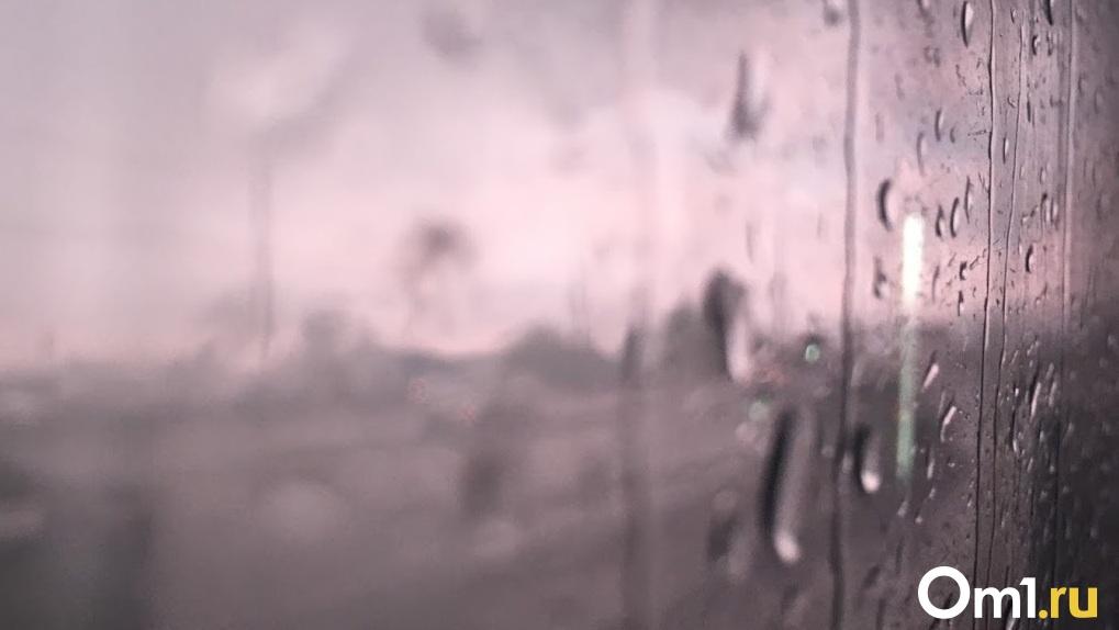 Дождь и сильный ветер. В МЧС предупредили омичей о резком ухудшении погоды