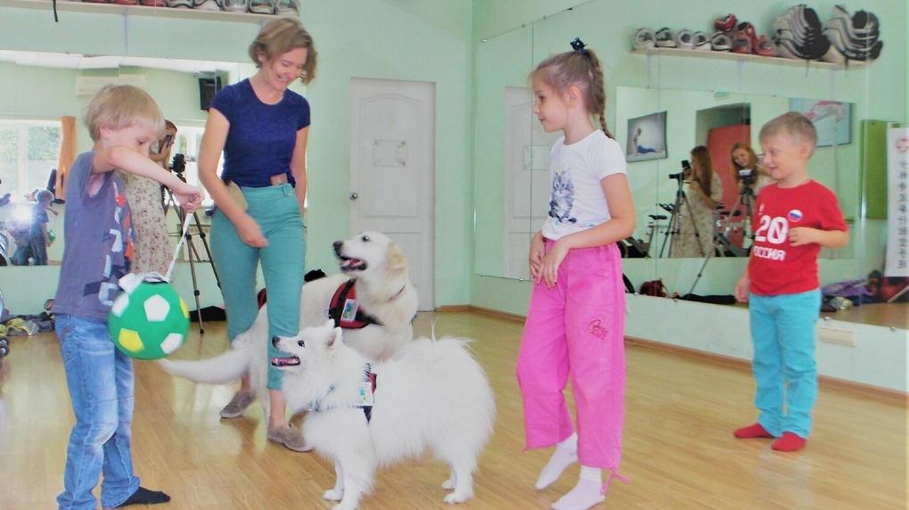 Собаками будут лечить страхи новосибирских детей