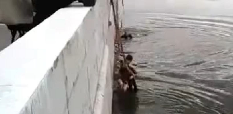 Прохожие в Омске спасли двух трехлетних девочек, упавших в Иртыш - ВИДЕО