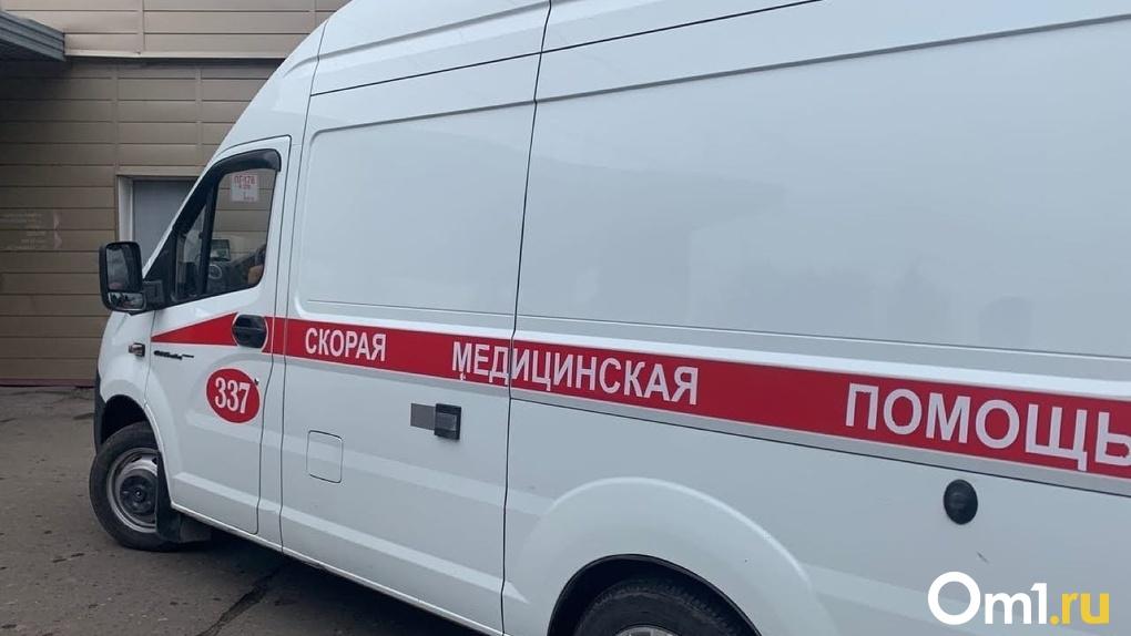 В Омске женщину с 5-летней девочкой сбил автомобиль, выезжающий со двора