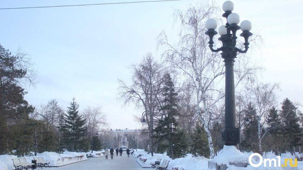 В декабре в Омской области обещают аномальное потепление