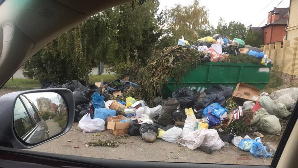 Парк «Зеленый остров» в Омске превращается в свалку мусора