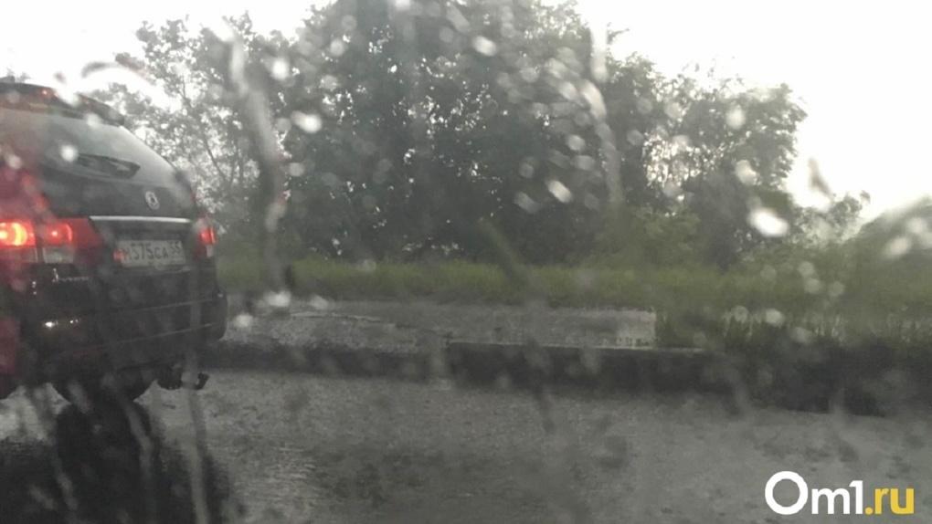 Дожди и грозы: погода огорчит новосибирцев на длинных выходных