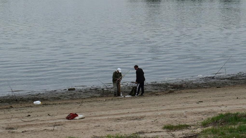 Коронавирус повлиял на экологию Иртыша? В омской реке завелись раки