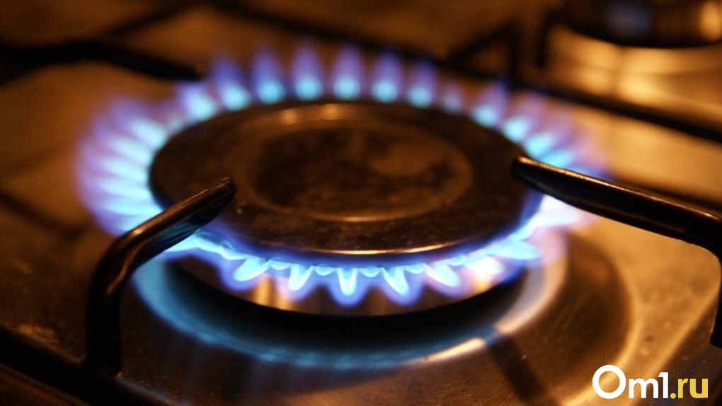 Россиянам запретят готовить на не прошедших техобслуживание газовых плитах