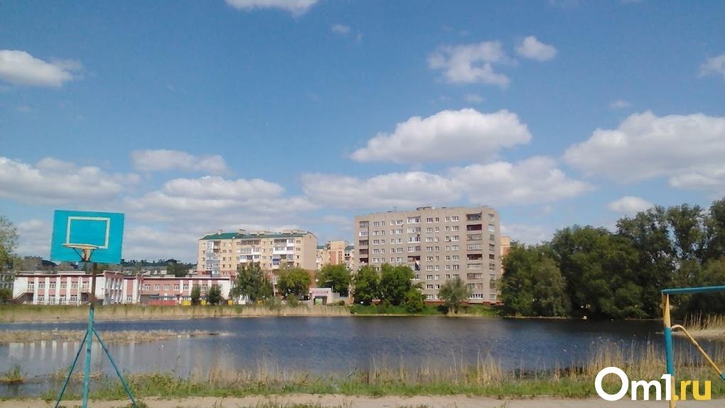 Омские общественники раскритиковали «благоустройство» озера Кирпичка