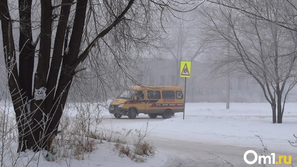 Полсотни новосибирских школьников прогуляли уроки из-за поломки автобуса