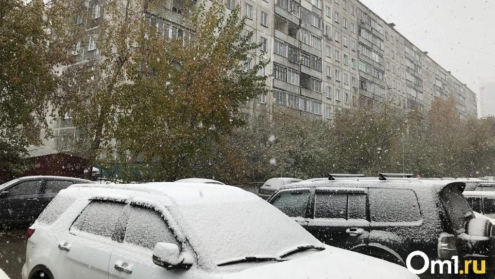 Снегопад и вьюга окутают Новосибирск в последнюю неделю октября