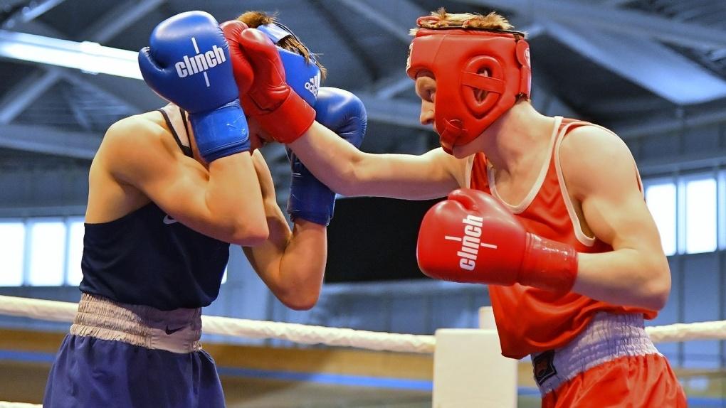В Омске стартовало Первенство СФО по боксу среди юниоров