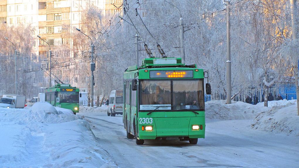 В Новосибирске муниципальный транспорт бесплатно повезет школьников на новогодних каникулах