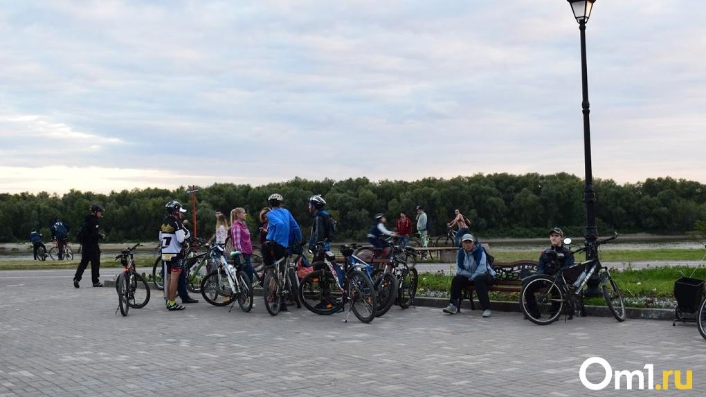 В Омске планируют масштабное развитие велодвижения