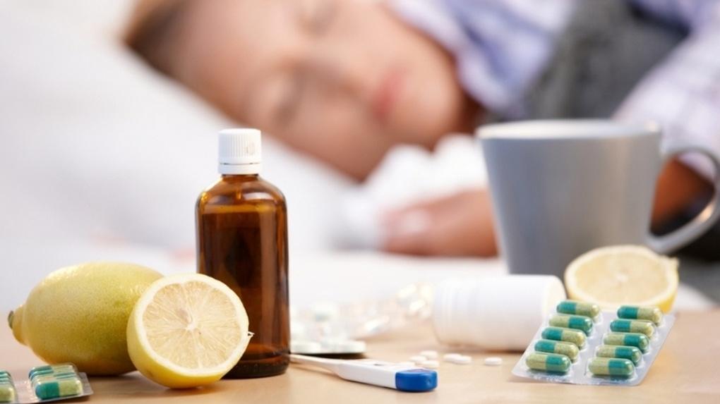 Вирус гриппа пока не проник в Омскую область