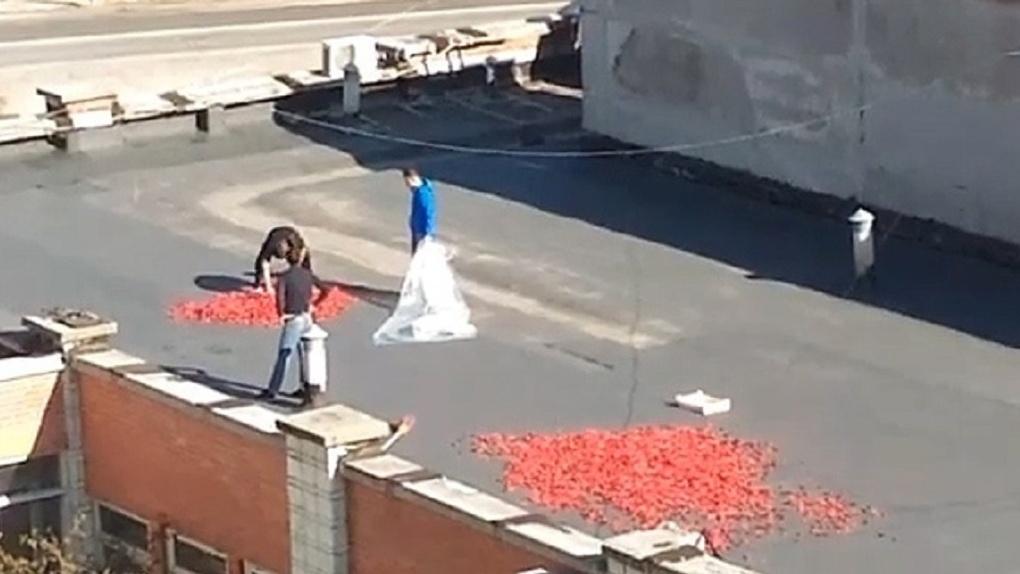 Перчика не хватает? На крыше здания в Новосибирске нелегально запустили массовую сушку овощей