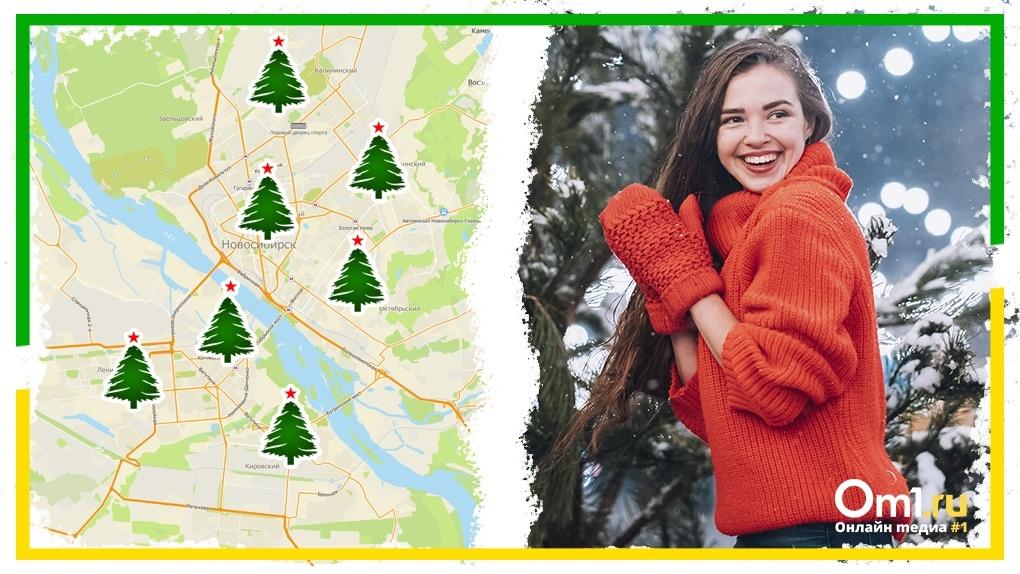 Где купить новогоднюю ёлку в Новосибирске? Онлайн-карта