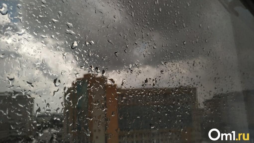 Температура в Омске резко упадёт до 4 градусов