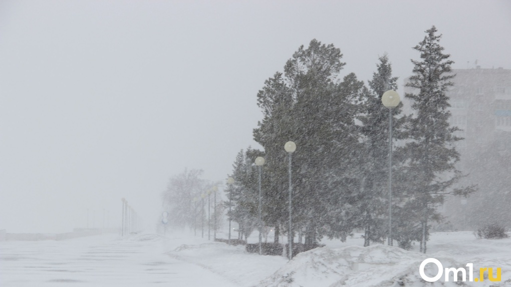Штормовое предупреждение объявило МЧС в Новосибирске из-за надвигающейся бури