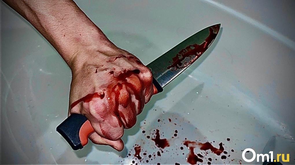Заколол ножом в грудь: новосибирца отдали под суд за жестокое убийство знакомого