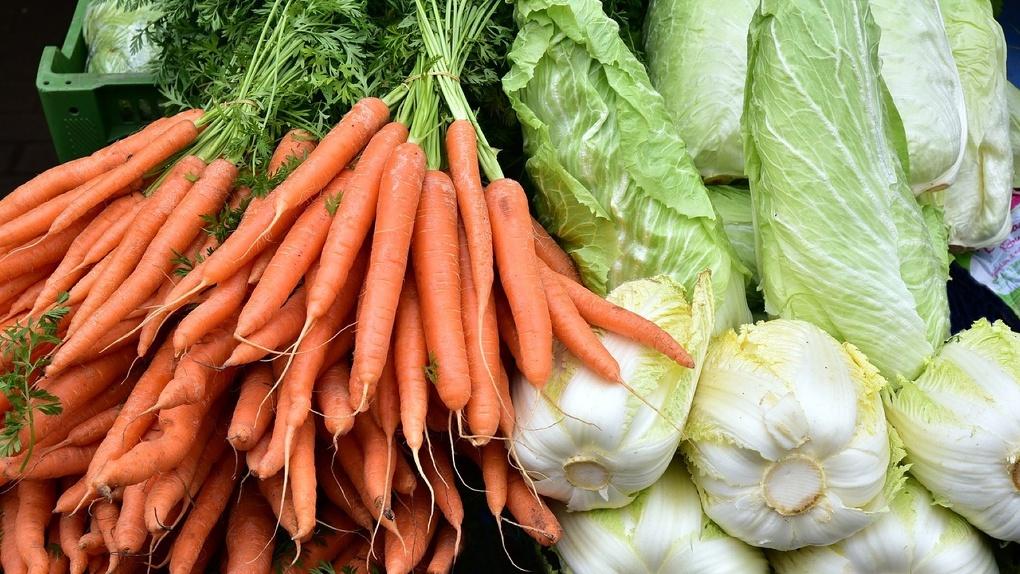 Новосибирским дачникам предлагают бесплатные места для торговли овощами с грядок