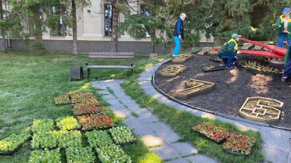 2500 цветов украсят клумбу-часы в центре Новосибирска