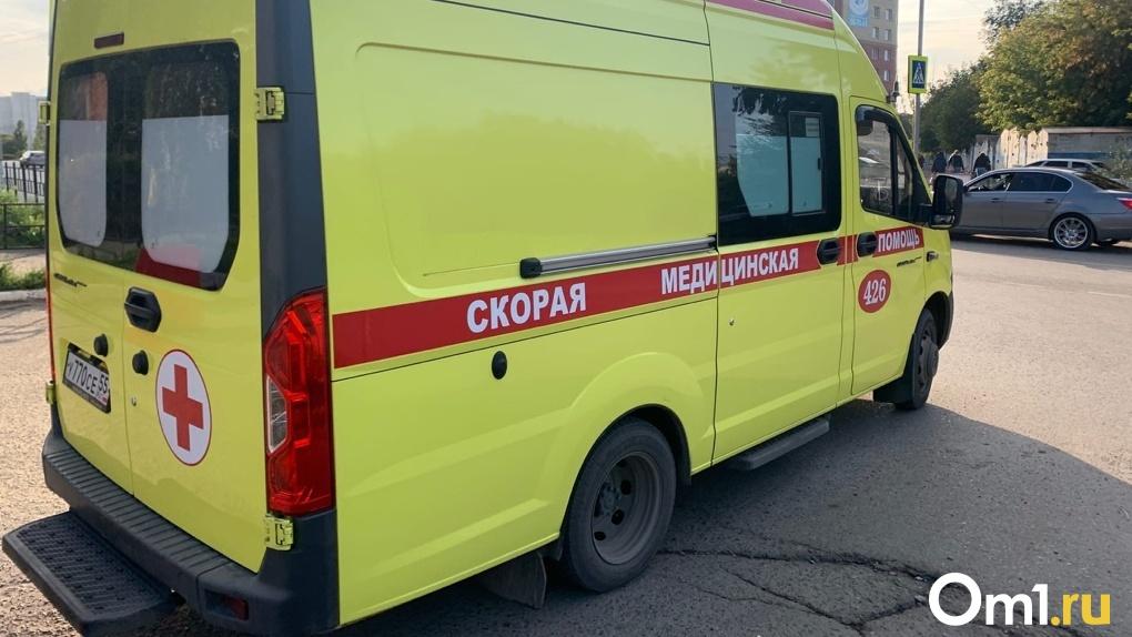 В Омской области автоледи врезалась в мотоблок, который отлетел на ребёнка