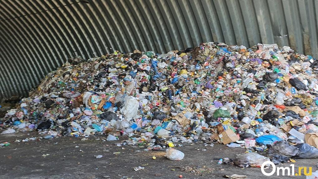 Мэр Новосибирска Анатолий Локоть заявил о консервации мусорного полигона «Левобережный»