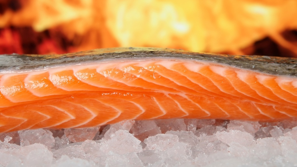 В Омске уничтожили 600 килограммов лосося из Норвегии